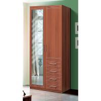 2-х дверные распашные шкафы